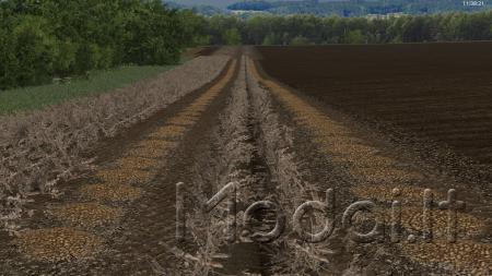 VNSFDG2 BY AKPIL BULWA 2 V1.0